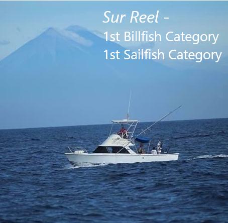 Sur Reel 1st billfish and sailfish