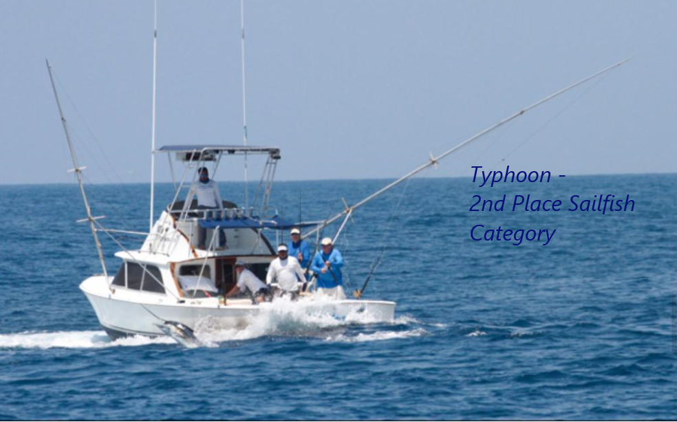typhoon 2nd sailfish